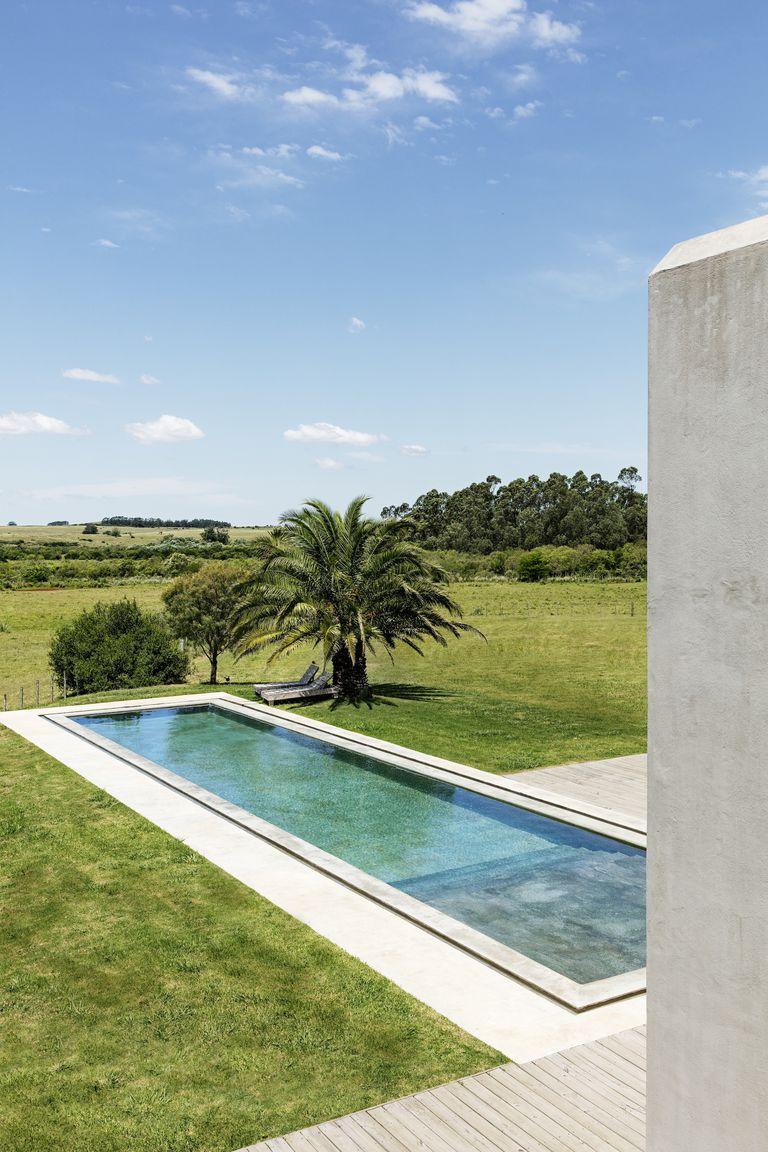 Ricardo LabougleМинималистичен басейн. Това е един имот в Уругвай. Пътека от евклиптово дъвро води към басейн с гледка към пасищата. Финиковите палми са за повече сянка и повече чар на района.
