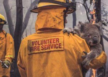 Пожарникарите, които спасяват животни, хора и домове в австралийските пожари! Източник: Reddit